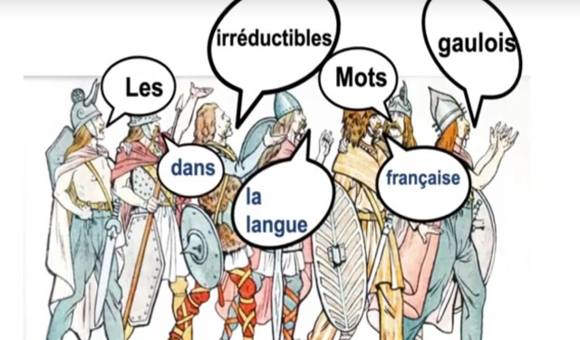 Les irréductibles mots gaulois dans la langue française - Jacques Lacroix